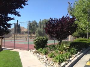 Vista Serena Tennis